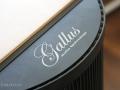 Gallus-Aquarius-07